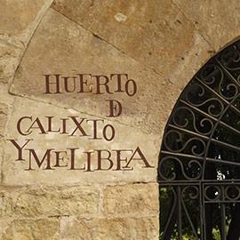 LEARN SPANISH IN SALAMANCA DQ 10